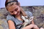 Путин подарил девочке из Хакасии на Новый год щенка