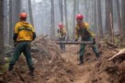 МЧС: горящий в Сибири торф не привел к ПДК вредных веществ в воздухе
