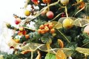 Власти ставропольского Михайловска отменяют новогодние мероприятия