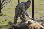 Аксенов: зоопарки Крыму нужны, но