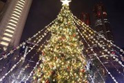 Ислам не рекомендует. Последняя рождественская елка?