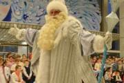 Дед Мороз о депутатах: каких выбрали, то и получили
