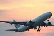 Рейс из Мумбаи в Лондон развернули из-за крысы на борту
