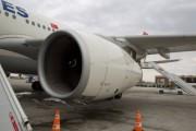 Turkish Airlines перед Новым годом отменила 142 рейса