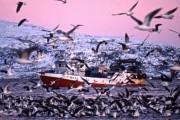 Моряков вовремя спасли пограничники