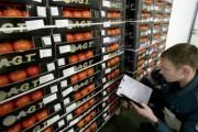Выявлены каналы ввоза товаров с поддельными турецкими сертификатами