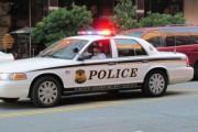 В США задержали 180-килограммовую бородатую женщину с ножом