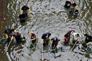 Жители Парижа сделали ужасающие находки на дне канала