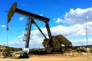 Медведев: динамику стоимости нефти трудно предсказать