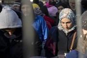 Луйк: мигранты-мусульмане ведут себя антиконституционно