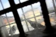 Адвокат: уголовное дело об избиении заключенных возбуждено в Калмыкии