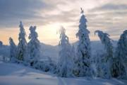 Кунцевич: смерть отшельника - первое ЧП за 50 лет на перевале Дятлова