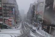 В Токио выпал первый за эту зиму снег