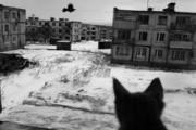 Город-призрак на Курилах