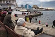 Власти: Крым открыт для евреев, бегущих от антисемитизма в Европе
