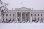 Более 35 сантиметров снега выпало в Вашингтоне