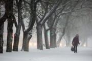 МЧС предупредило о приближении к Приморью мощного циклона
