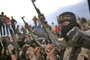 В США с 2014 года задержаны 65 подозреваемых в связях с ИГ