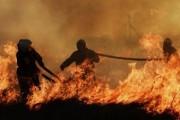 Число погибших при пожаре в Ленобласти выросло до семи человек