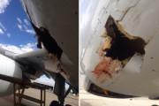 Птица пробила дыру в пассажирском лайнере